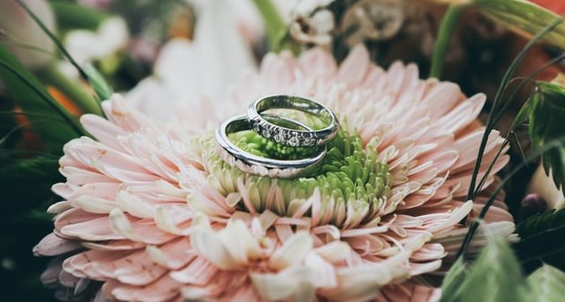 Wedding rings placed on a pink flower.